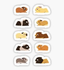 Guinea pigs Sticker