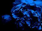 Black Blues by Dominique Meynier