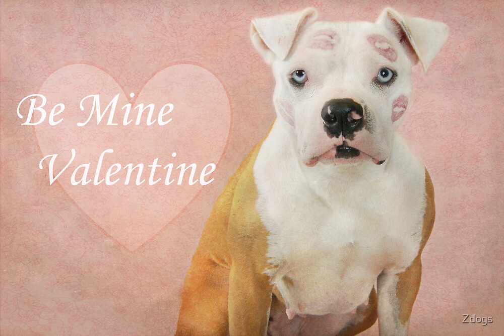 Be Mine Valentine by Zdogs