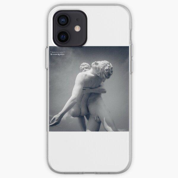 A Frozen Rescue  iPhone Soft Case