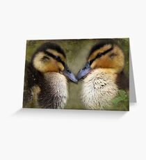 """The Look of Love ..."" Greeting Card"