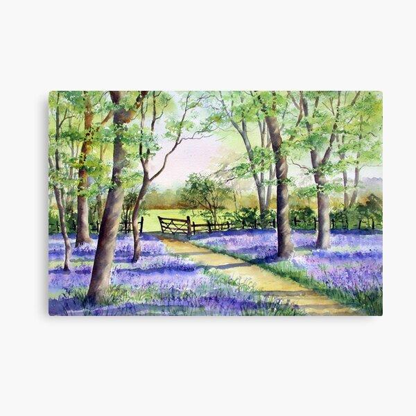 Bluebell path Canvas Print