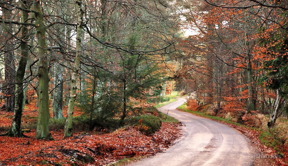 A curvy country-road by jchanders