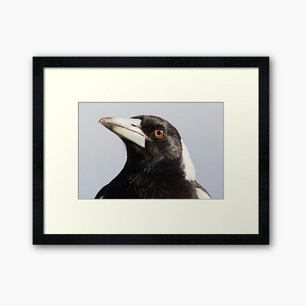 Aussie Icon Framed Art Print