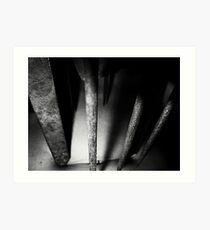 02-04,05,06-2011  Torture Art Print