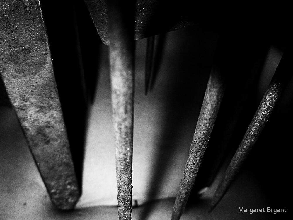 02-04,05,06-2011  Torture by Margaret Bryant
