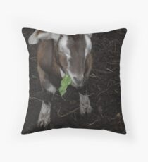 Hungry Goat Throw Pillow
