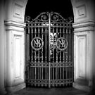Front Gate by Colleen Drew