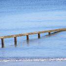 Sea defences.  by kirstea1990