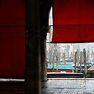 the red curtain by fabio piretti