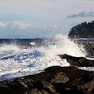 Big Wave by TerrillWelch
