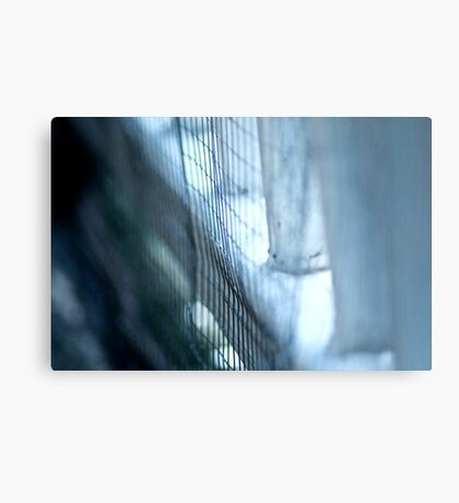 Fence dog in..: On featured:1.The-power-of-simplicity Group 2.Nikon-d90-users Group 3.Groups/chrome-mafia Group 4.Feminine-intent Group  Metal Print