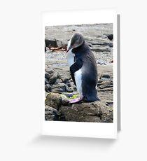 Yellow Eyed Penguin Greeting Card
