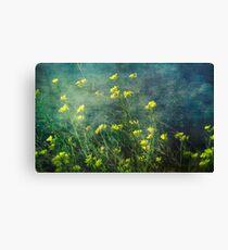 Water Weeds Canvas Print