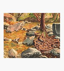 Independence Trail, Nevada City CA - watercolour Photographic Print