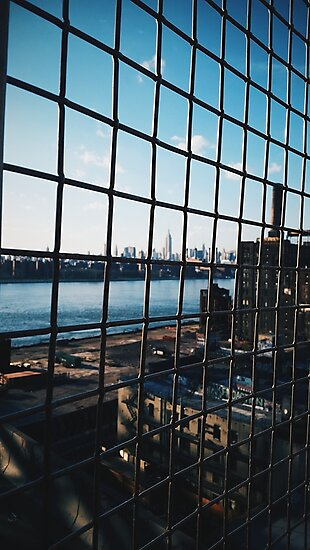 Empire State Through Cage by alegca