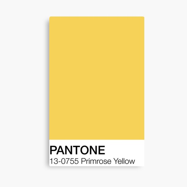 Pantone Primrose Yellow  Canvas Print