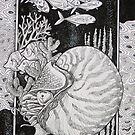 Nautilus. by Robert David Gellion