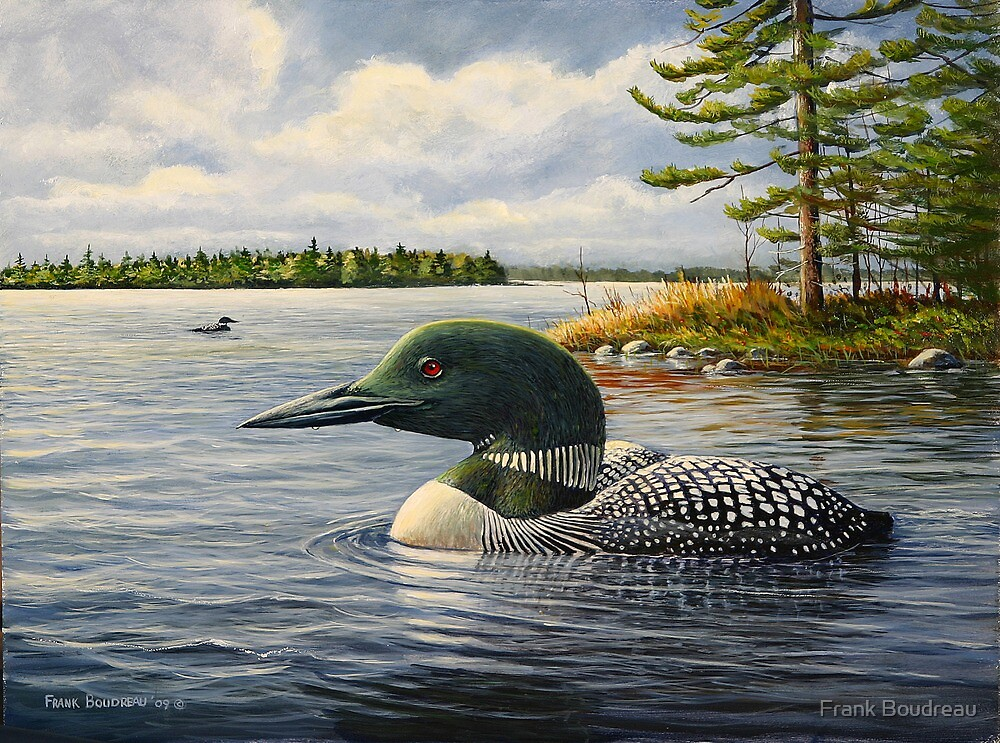 """""""Loon On The Roseway"""" by Frank Boudreau"""
