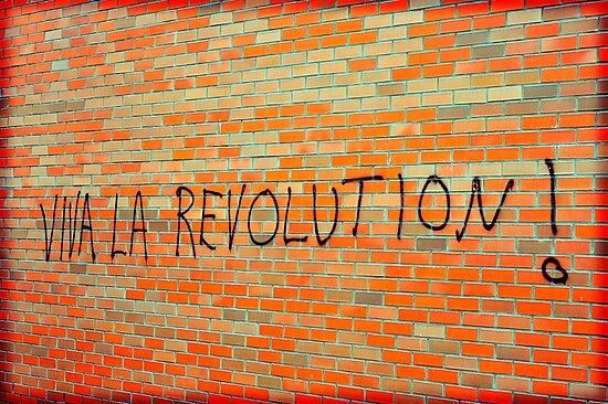 Viva La Revolution by David Crausby