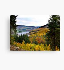 Upper Derwent Reservoir Canvas Print