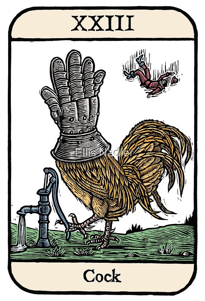 Cock by Ellis Nadler