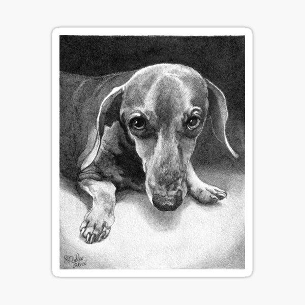 ASTRO/ smooth dachshund Sticker