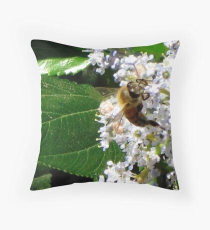 Spring, wonderful Spring Throw Pillow