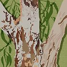 River Red Gum Tree by blueidesign