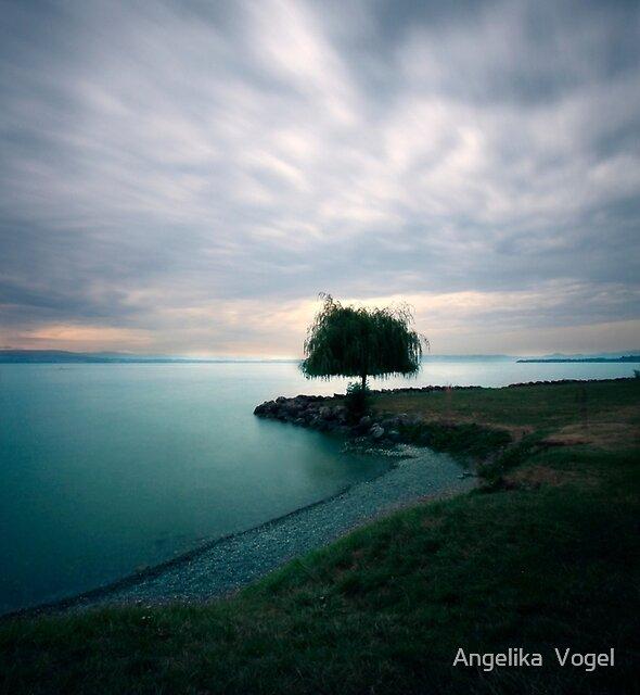 Summer Evening by Angelika  Vogel