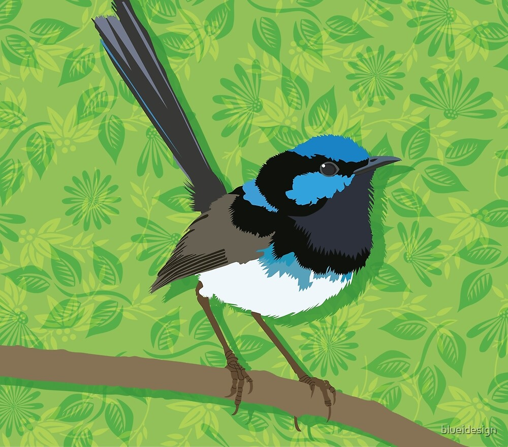 Fairy Wren Bird by blueidesign