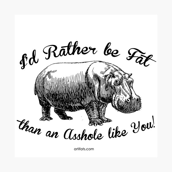 I'd rather be FAT than an ASSHOLE like YOU Photographic Print