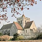 Church of St Mary and St Blaise, Boxgrove, West Sussex by dgbimages