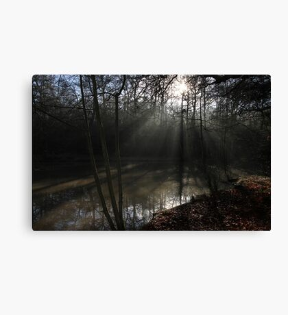 The Sun in the Woods Canvas Print