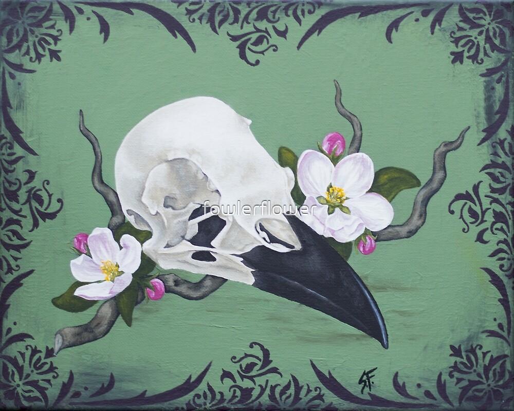 Crow skull by fowlerflower