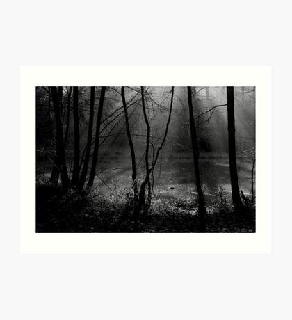 Mist on the Water Art Print