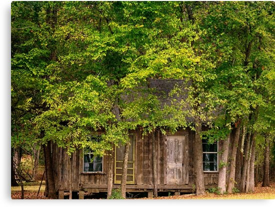 Abandoned House East Texas by Capt. Charles McKelroy