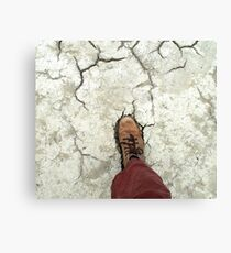 ecological footprint Canvas Print