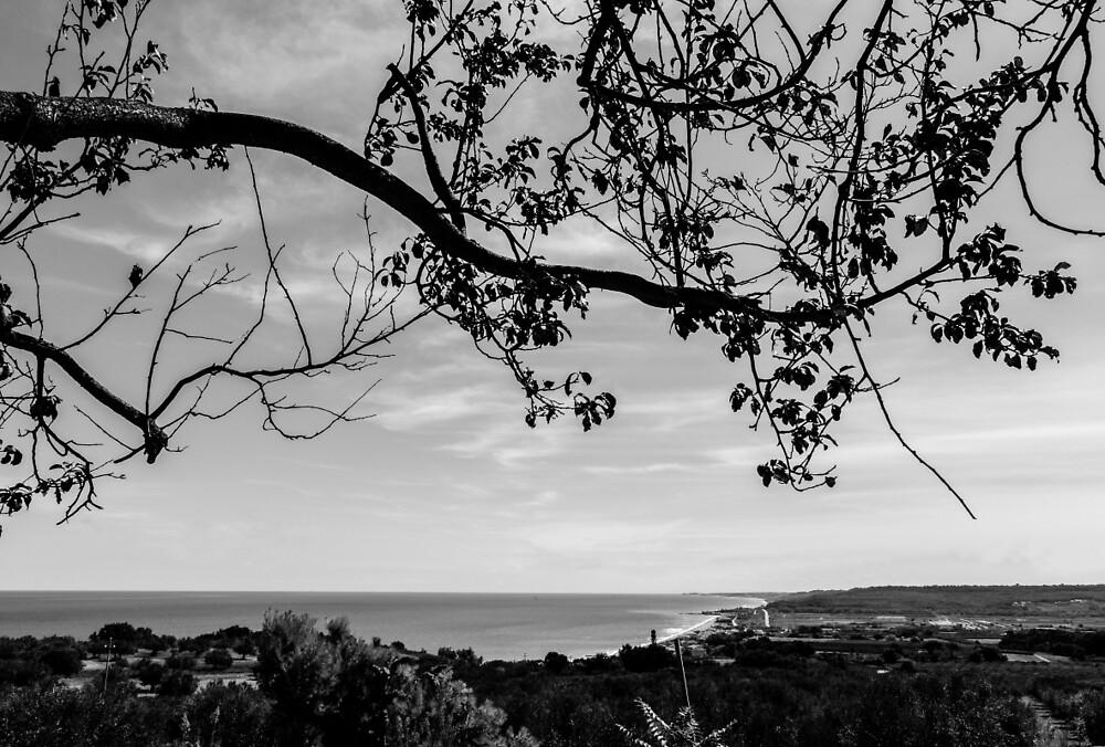 Panoramas from Italy - Abruzzo 2 by Andrea Mazzocchetti