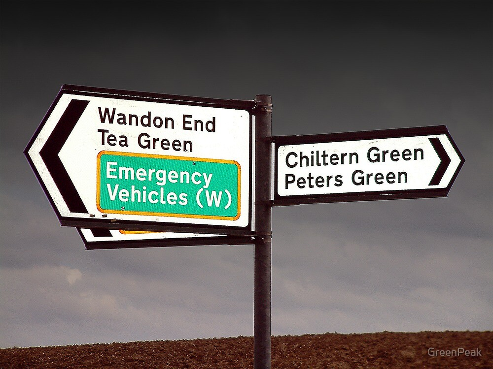 Which Way To The Greens? by Paul  Green