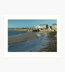 Barmouth Harbour No1 Art Print