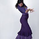 Flamenco dancer 4 by Aleksandar Topalovic