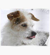 Mmmm I'm Thinking Snow Icecream!! Poster