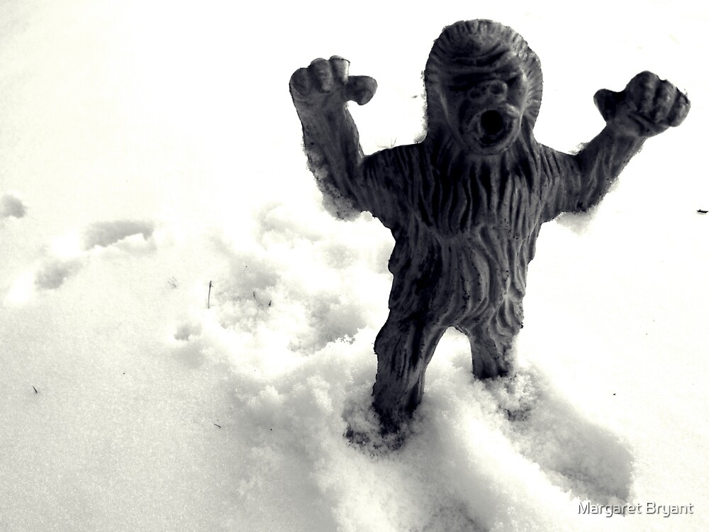 02-08-2011 Winter Threatens aka YETI ATACK!!!! by Margaret Bryant