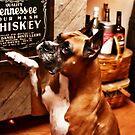 Jack Daniels if you please... by luckylarue