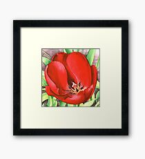 Red Tulip - Watercolour marker painting Framed Print