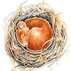 Mouse in the nest by Patrizia  Ambrosini