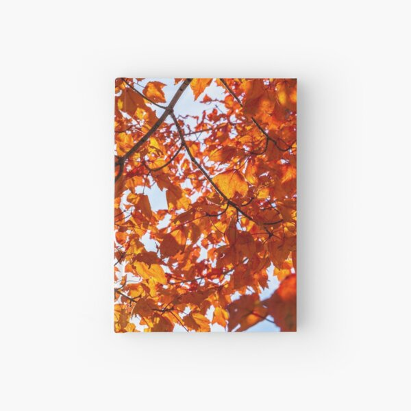Fall Maple Hardcover Journal