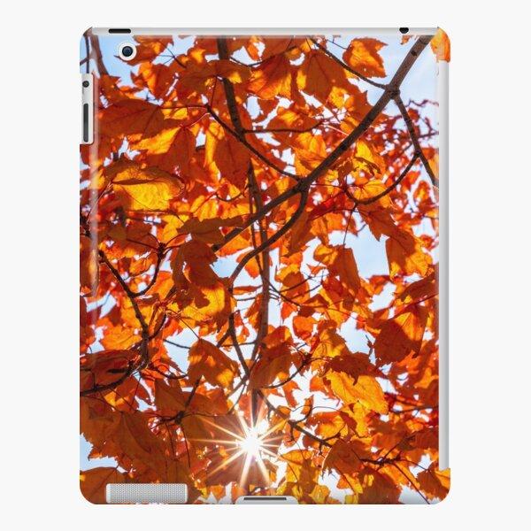 Fall Maple iPad Snap Case