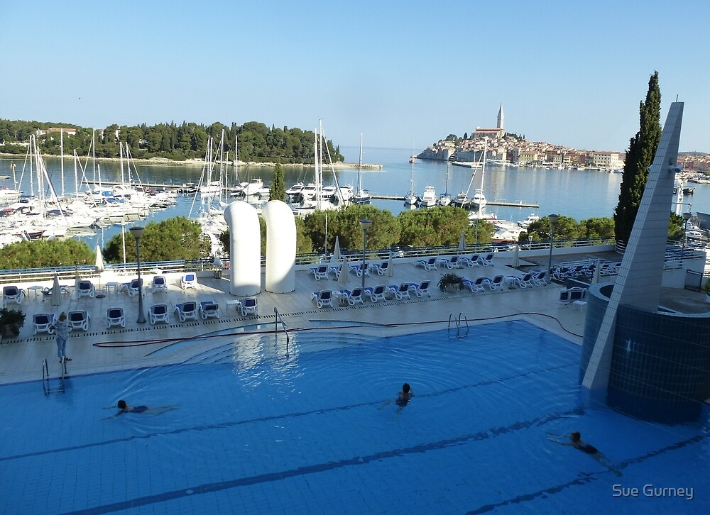 Pool With a View by Sue Gurney
